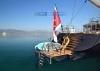 Barracuda Red Sea
